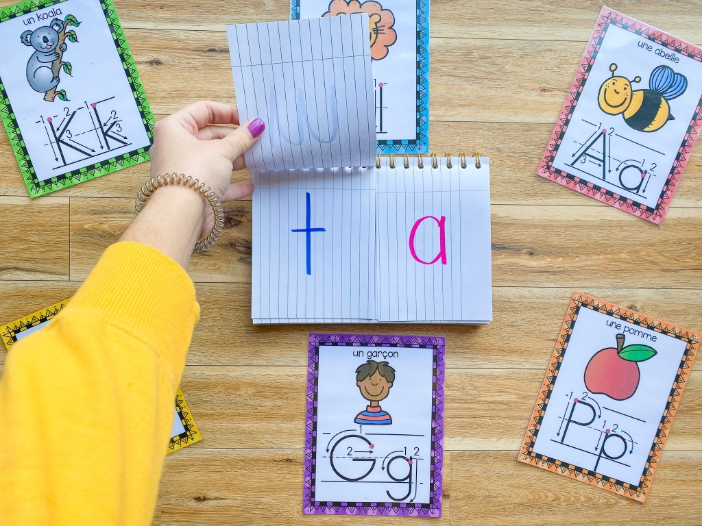 French CV (consonant-vowel) flip book. Helps students learn to read French syllables.